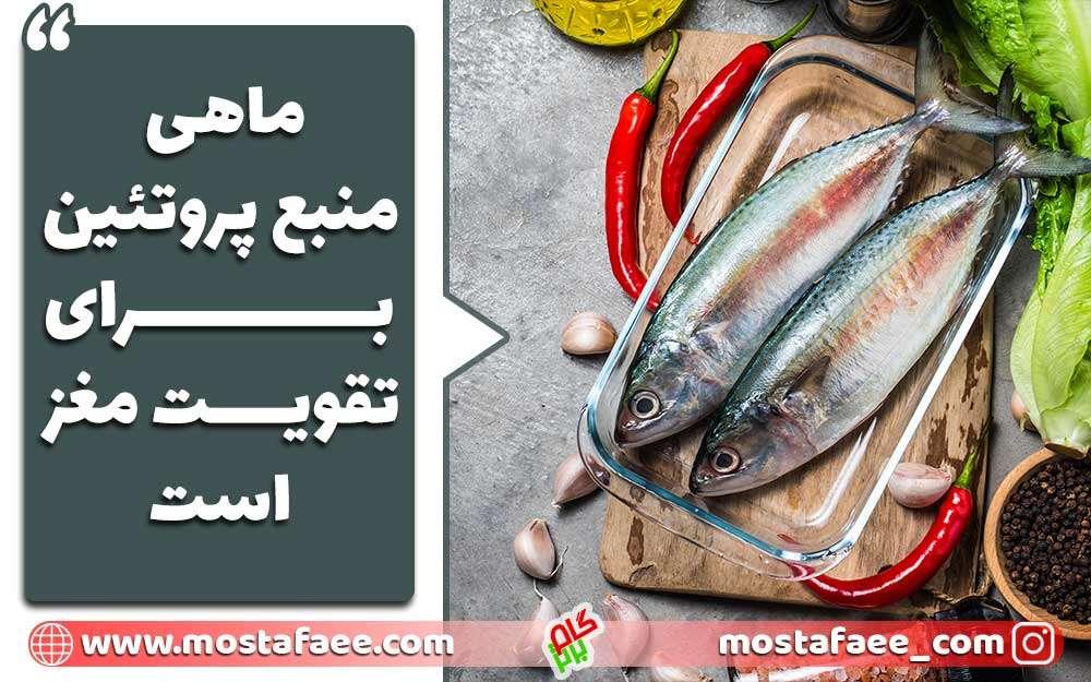 ماهی منبع مغذی برای افزایش تمرکز است