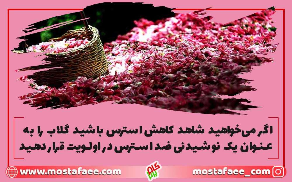 خوردن گلاب موجب مدیریت استرس شما میشود