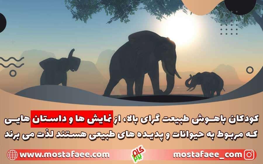 کودکان با هوش طبیعت گرای بالا، از نمایش ها و داستان هایی که مربوط به حیوانات هستند لذت می برند